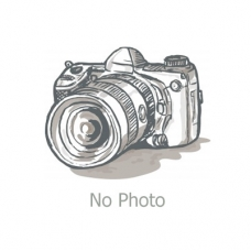 Проставка N120-110002-500
